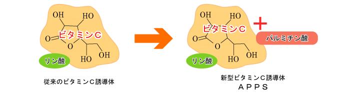 新浸透型ビタミンC誘導体 APPS