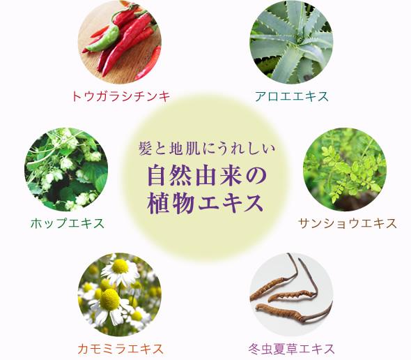 髪と地肌にうれしい自然由来の植物エキス